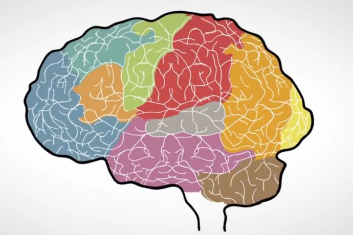 Your Brain's Amazing Ability to Change
